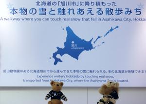 Asahikawa1