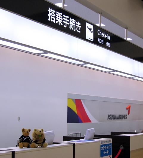 Ibarakiairport4